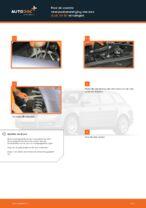 Hoe de voorste veerpootbevestiging van een Audi A4 В7 vervangen