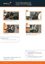 Montage Draagarm wielophanging VW TRANSPORTER V Platform/Chassis (7JD, 7JE, 7JL, 7JY, 7JZ, 7FD - stap-voor-stap handleidingen