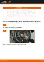 Stap-voor-stap reparatiehandleiding Fiat Punto 176