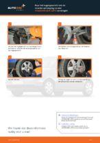 Fuseekogel veranderen Polo 6n1: instructie pdf
