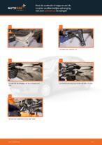 Draagarm wielophanging veranderen: pdf handleidingen voor CITROËN C3