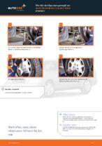 Hinweise des Automechanikers zum Wechseln von MERCEDES-BENZ W202 Mercedes C 250 2.5 Turbo Diesel (202.128) Bremsscheiben
