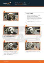 Wie Bremsscheibe PEUGEOT 406 auswechseln und einstellen: PDF-Anleitung