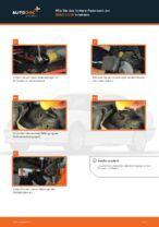 Wie Sie das hintere Federbein am BMW 3 E36 ersetzen