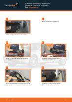 Quand changer Fixation de jambe de suspension PEUGEOT 406 Break (8E/F) : manuel pdf