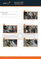 Bil vedligeholdelse: gratis manual