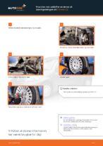 Udskiftning af Styrekugle: pdf vejledning til CITROËN C3