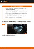 Auto mechanic's recommendations on replacing FIAT FIAT BRAVO II (198) 1.6 D Multijet Springs