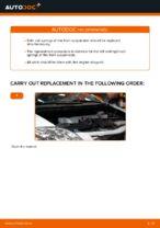 Manual PDF on AURIS maintenance