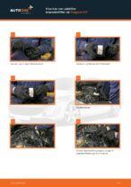 Vedligeholdelse af Filter: gratis manual