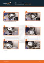 Hvornår skal Bremsecaliper skiftes TOYOTA PRIUS Hatchback (NHW20_): vejledning pdf