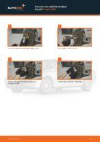Skift Hjullejesæt PEUGEOT 406: pdf gratis