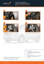 Montering af Stabilisatorarm MERCEDES-BENZ VIANO (W639) - trin-for-trin vejledning