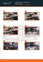 Recomendaciones de mecánicos de automóviles para reemplazar Discos de Freno en un MERCEDES-BENZ W202 Mercedes C 250 2.5 Turbo Diesel (202.128)