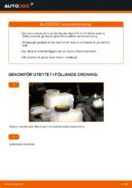 PDF guide för byta: Bromsskivor TOYOTA bak och fram