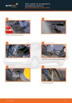 Recomendaciones de mecánicos de automóviles para reemplazar Discos de Freno en un MERCEDES-BENZ Mercedes W202 C 250 2.5 Turbo Diesel (202.128)