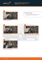 Manual mantenimiento VW pdf