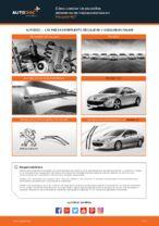 Reemplazo Escobillas instrucción pdf para PEUGEOT 407