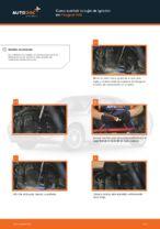 Cuándo cambiar Bujías PEUGEOT 406 Break (8E/F): manual pdf