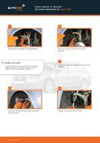 Cómo cambiar la rótula de dirección transversal en Audi A4 В7