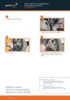 Instrucciones gratuitas online sobre cómo renovar Amortiguadores en VW TRANSPORTER
