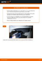 FIAT PUNTO manual de solución de problemas
