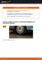 Manual de instrucciones FIAT PUNTO