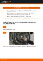 Tutorial paso a paso en PDF sobre el cambio de Cojinete de Rueda en FIAT PUNTO (188)