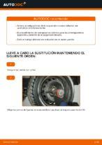 Guía de reparación paso a paso para Fiat Punto 188AX