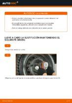 Cómo cambiar los resortes de suspensión trasera en FIAT PUNTO 188