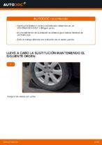 Instrucciones gratuitas online sobre cómo renovar Bieletas de Suspensión en VW GOLF