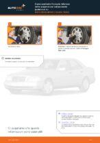 Le raccomandazioni dei meccanici delle auto sulla sostituzione di Ammortizzatori MERCEDES-BENZ Mercedes W202 C 250 2.5 Turbo Diesel (202.128)