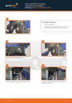 Freni manuale di sostituzione con illustrazioni
