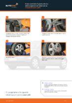 Le raccomandazioni dei meccanici delle auto sulla sostituzione di Supporto Ammortizzatore VW VW Lupo 6x1 1.0