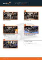 Istruzioni gratuite online su come rinnovare Filtro olio motore CITROËN C3 I (FC_)
