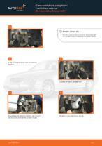 Le raccomandazioni dei meccanici delle auto sulla sostituzione di Pinza Freno MERCEDES-BENZ Mercedes W211 E 270 CDI 2.7 (211.016)