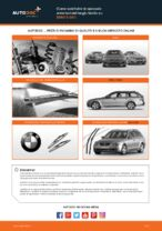 Le raccomandazioni dei meccanici delle auto sulla sostituzione di Supporto Ammortizzatore BMW BMW E60 525d 2.5