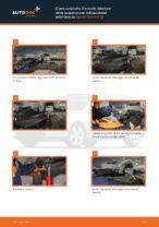 Come cambiare è regolare Cavi accensione SKODA OCTAVIA: pdf tutorial