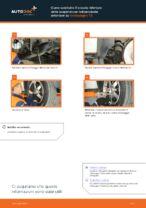 Come sostituire il braccio inferiore della sospensione indipendente anteriore su Volkswagen T5