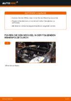 Montage Motorölfilter FIAT BRAVO II (198) - Schritt für Schritt Anleitung