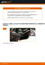 PDF manual sobre mantenimiento C1