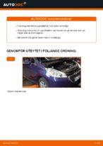MAXGEAR 60-0486 för PEUGEOT   PDF instruktioner för utbyte