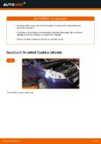 Recomandările mecanicului auto cu privire la înlocuirea PEUGEOT Peugeot 208 1 1.2 Filtru habitaclu