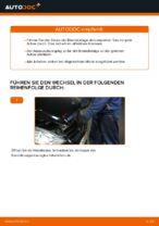 PDF Wechsel Tutorial: Bremsklötze MERCEDES-BENZ A-Klasse (W169) hinten + vorne