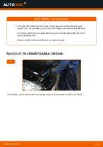 Manual intretinere MERCEDES-BENZ pdf