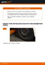 Εγχειρίδιο PDF στη συντήρηση C1