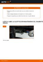 Cambiar Filtro de Aceite CITROËN C1: manual de taller