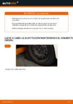CITROËN C1 manual de solución de problemas