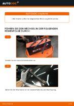 Wie Sie die hinteren Wischerblätter am Lexus RX XU30 ersetzen
