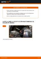 Cambio Amortiguador delanteros y traseros LEXUS bricolaje - manual pdf en línea